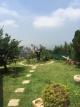 dreams-land-0-6f261b959aa49b34cd33ac83064768f4.JPG