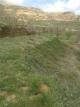 dreams-land-0-9d488f2b9d43f4b618b17cf719f85d14.jpg